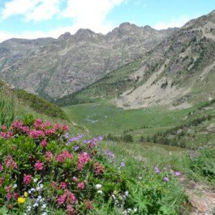 Bajada al Siscaro-Ronda dels Cims
