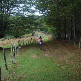 Tramo Etxegarate-Beasaín en Guipúzcoa del Ultra-Trail Ehunmilak