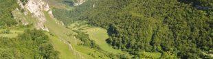 Bosques del Parque Natural de Somiedo
