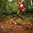 Maratón de Lagos de Covadonga.ConcursoSalomon