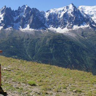 Un corredor por los alrededores del macizo del Mont blanc