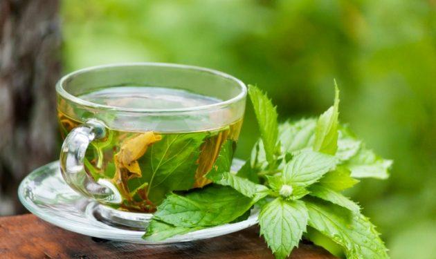 El té verde puede ser un gran aliado para el corredor de montaña