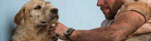 el perro callejero que compitió en un raid de aventura