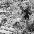 Nuria Picas en la Buff Epic Trail 2015 que ganó.