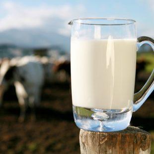 La leche como bebida para deportistas