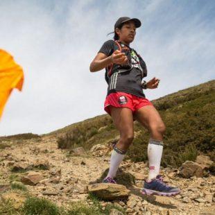 Bandera marcando el recorrido del Ultra del Montseny 2016