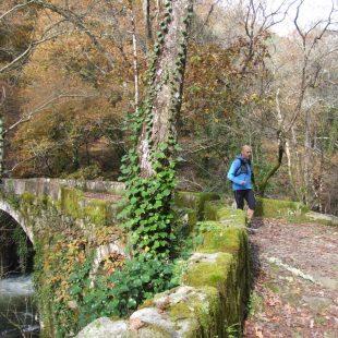 Uno de los lugares por los que discurrirá la Galicia Máxica Trail Adventure