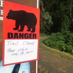 Cartel de peligro tras el ataque del oso