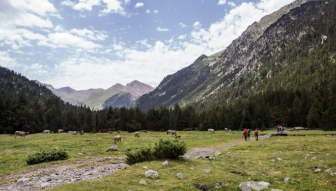 BUFF® Mountain Festival de la Vall de boí
